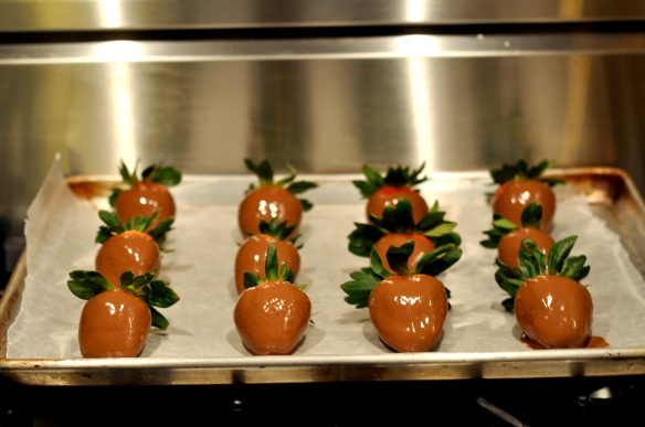 chocolate_Covered_strawberries_milk_chocolate_covered_strawberries