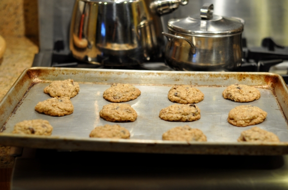 Oatmeal_Cookies_recipe_chocolate_cherries_coconut